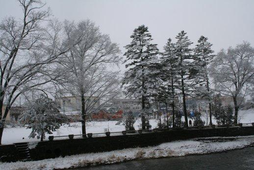 101207 雪景色 007.jpg