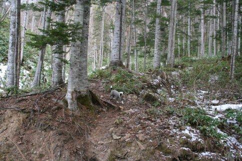 20091208 王子の山 013.jpg